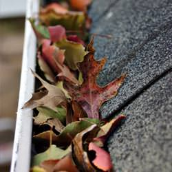 Clogged gutters filled with fall leaves  in Yadkinville